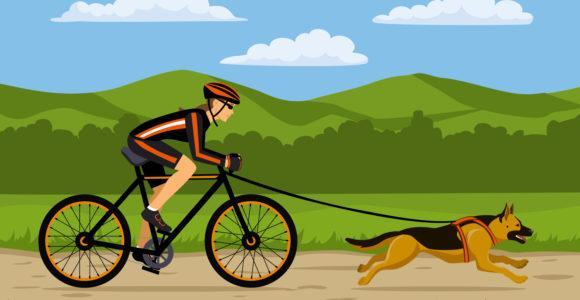 Bikejoring